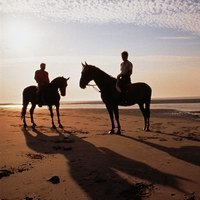 Horse-riders on Borkum's northern beach